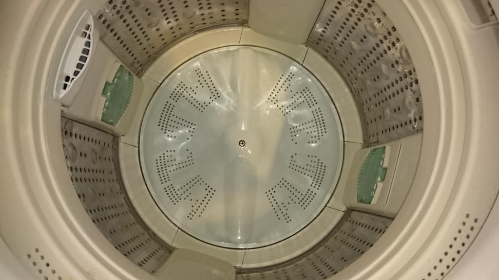 実験,洗濯槽,清掃,洗浄,カビ,洗濯槽クリーナー,酸素系,酵素系,塩素,
